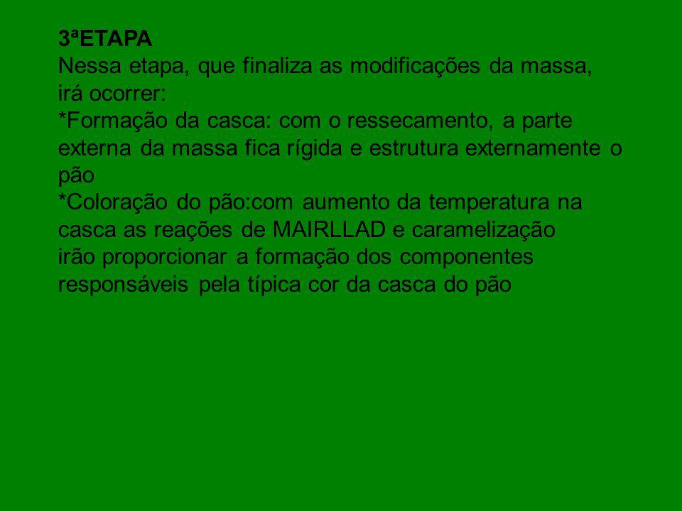 3ªETAPA Nessa etapa, que finaliza as modificações da massa, irá ocorrer: *Formação da casca: com o ressecamento, a parte.