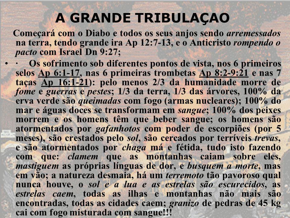 A GRANDE TRIBULAÇAO