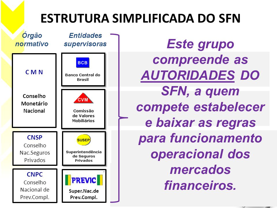 ESTRUTURA SIMPLIFICADA DO SFN