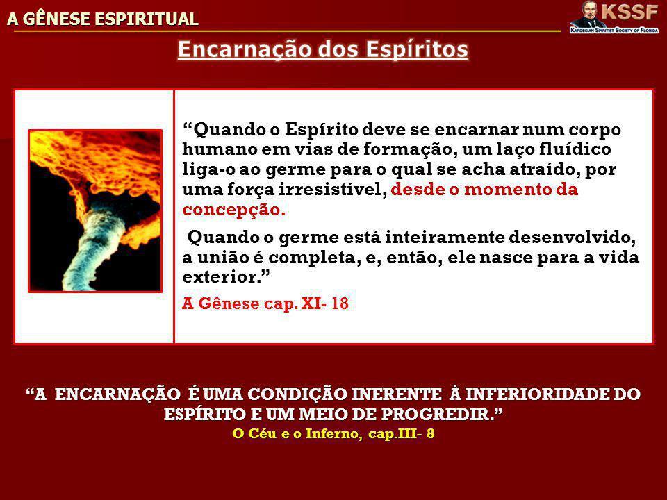 Encarnação dos Espíritos O Céu e o Inferno, cap.III- 8