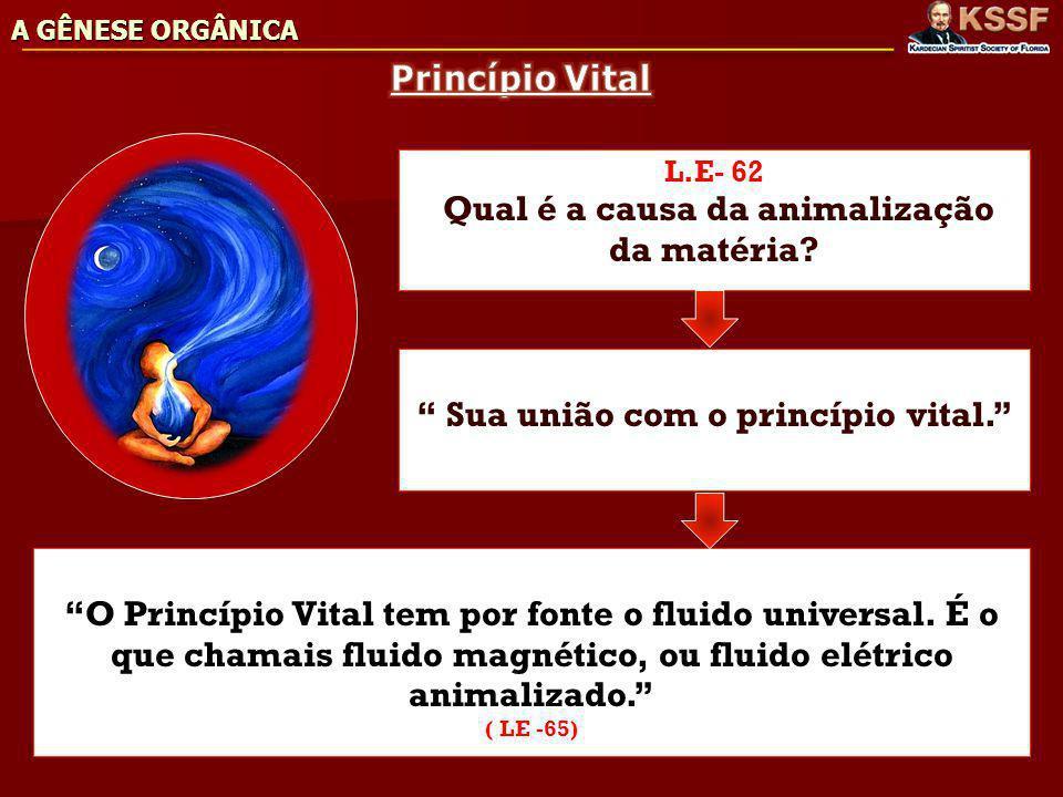 Sua união com o princípio vital.