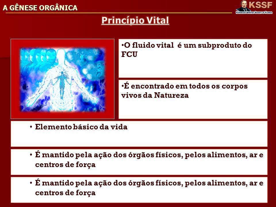 Princípio Vital O fluido vital é um subproduto do FCU