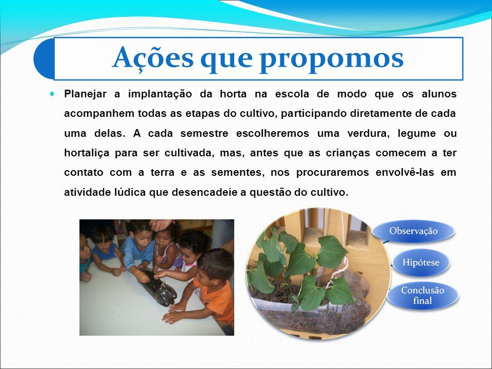 Planejar a implantação da horta na escola de modo que os alunos acompanhem todas as etapas do cultivo, participando diretamente de cada uma delas.