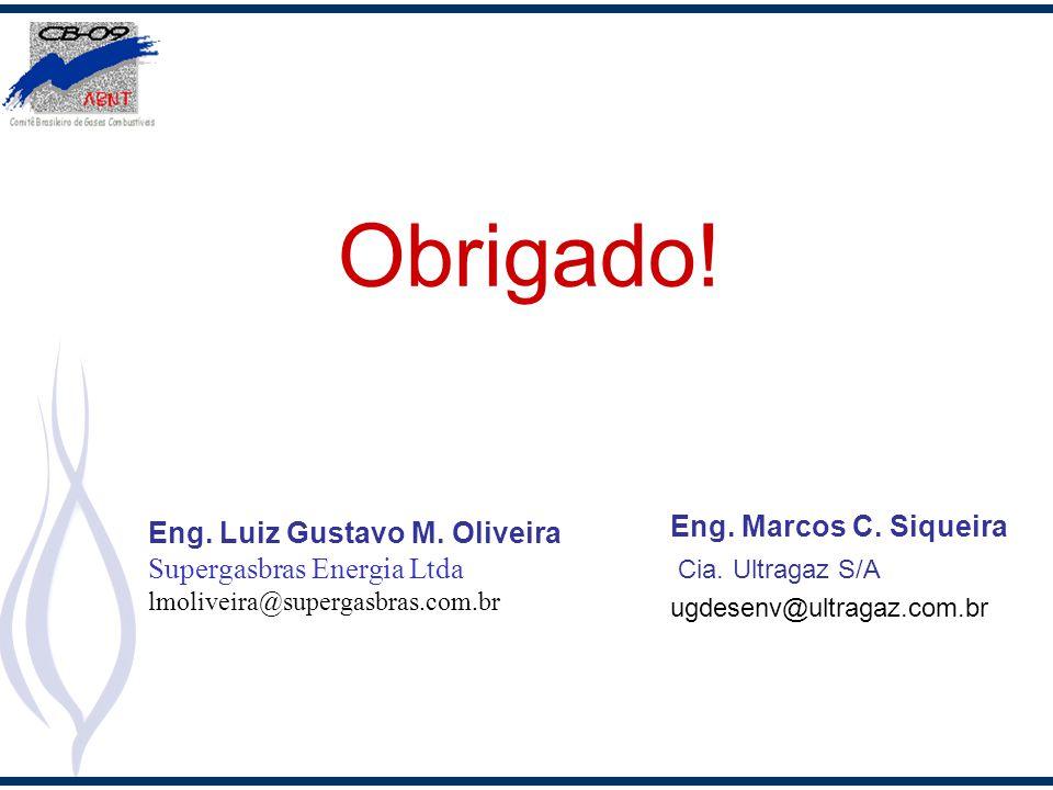 Obrigado! Eng. Marcos C. Siqueira Eng. Luiz Gustavo M. Oliveira