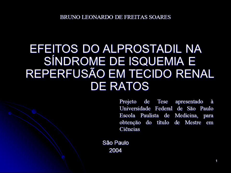 BRUNO LEONARDO DE FREITAS SOARES