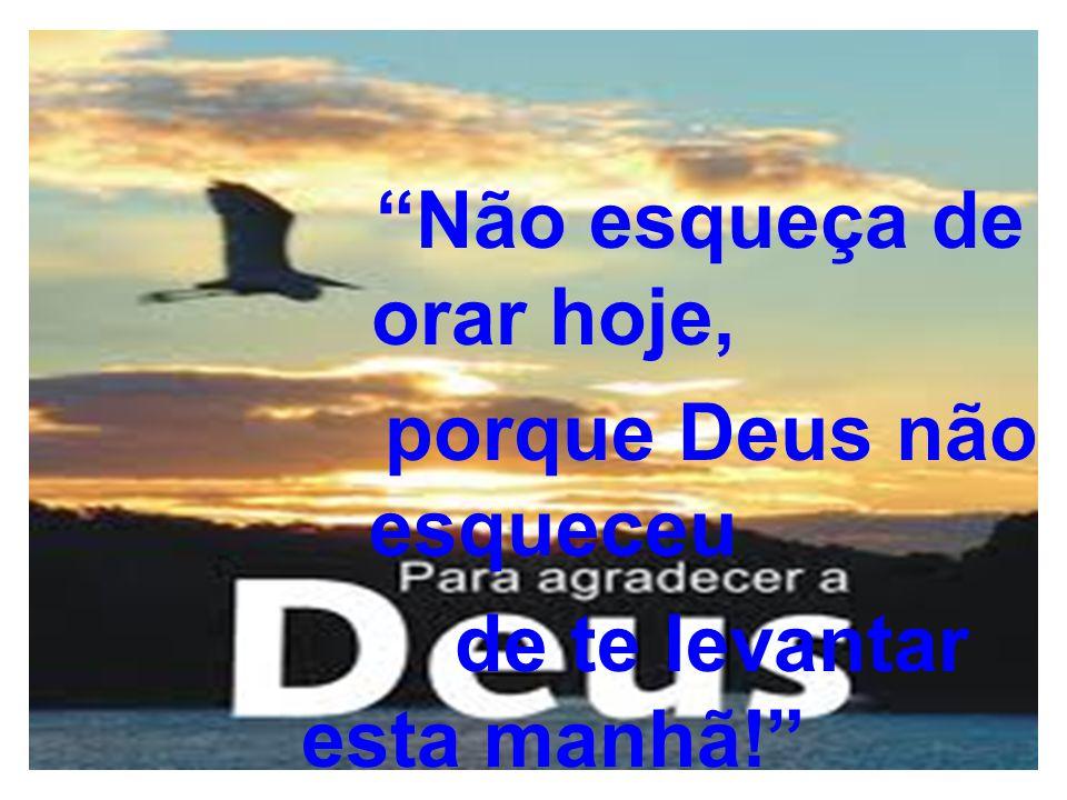 Não esqueça de orar hoje, porque Deus não esqueceu de te levantar esta manhã!