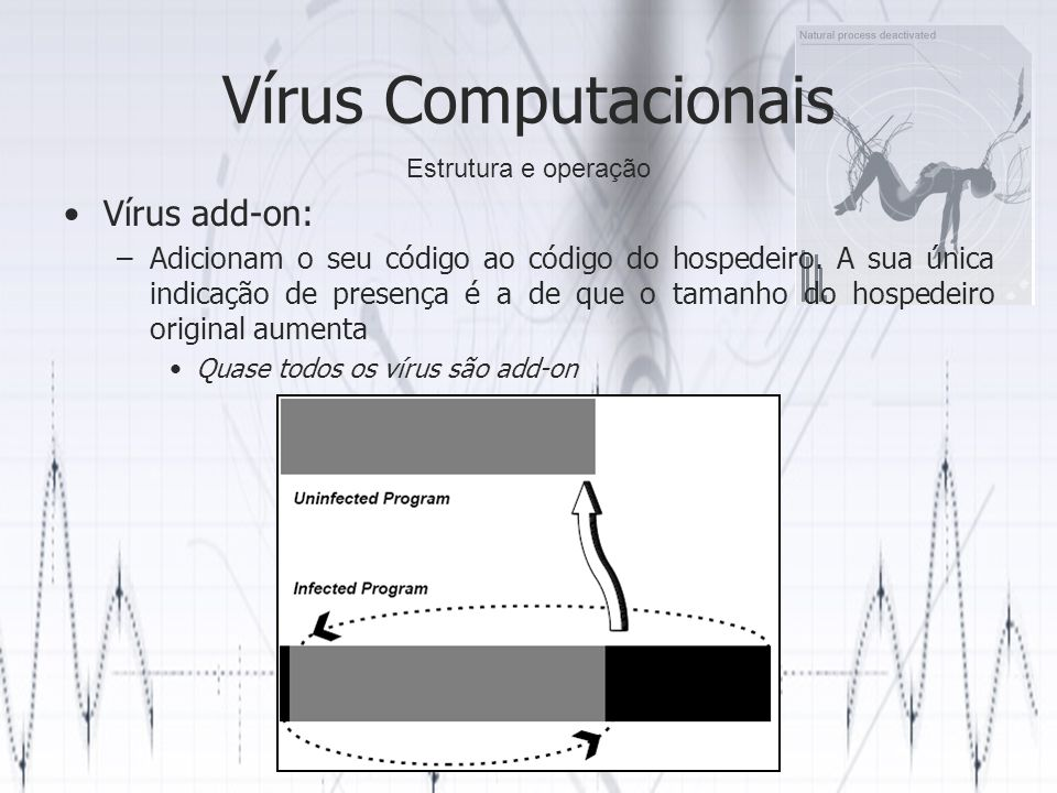 Vírus Computacionais Vírus add-on: