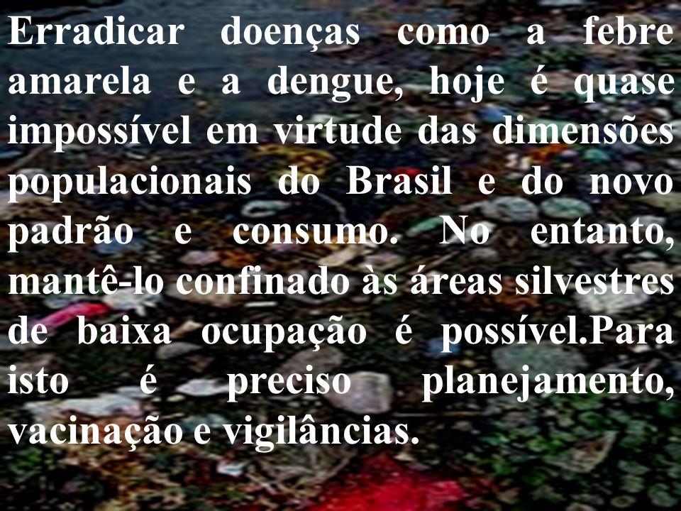 Erradicar doenças como a febre amarela e a dengue, hoje é quase impossível em virtude das dimensões populacionais do Brasil e do novo padrão e consumo.