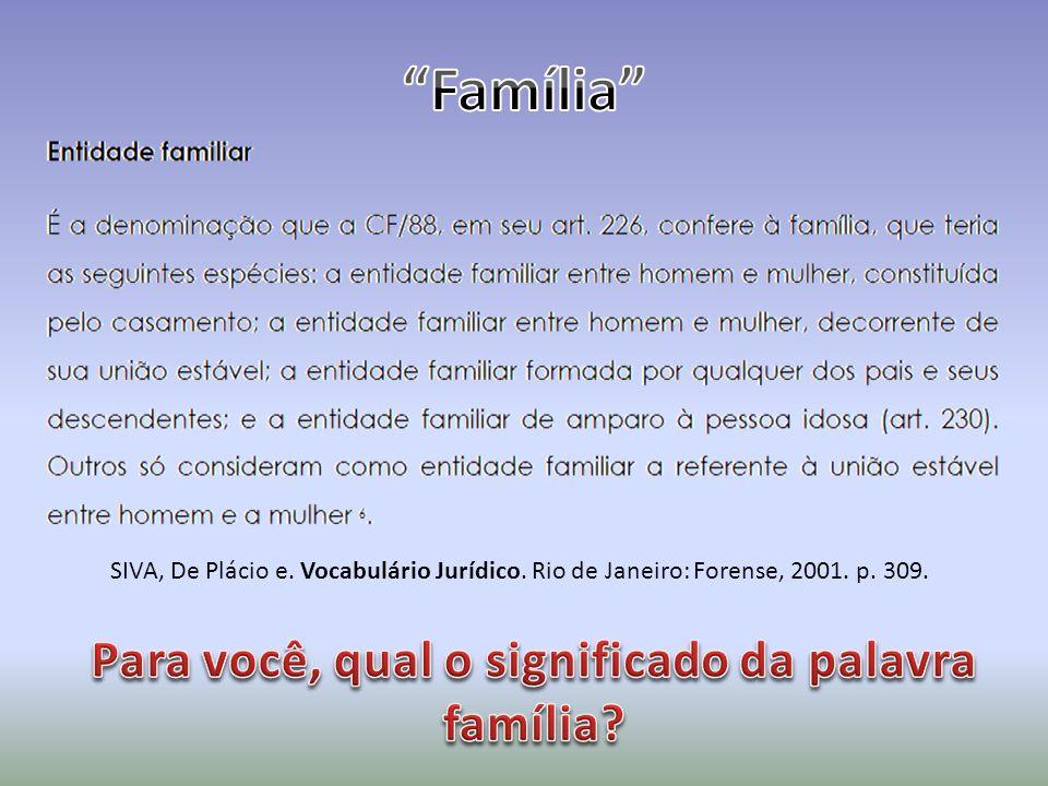 Para você, qual o significado da palavra família