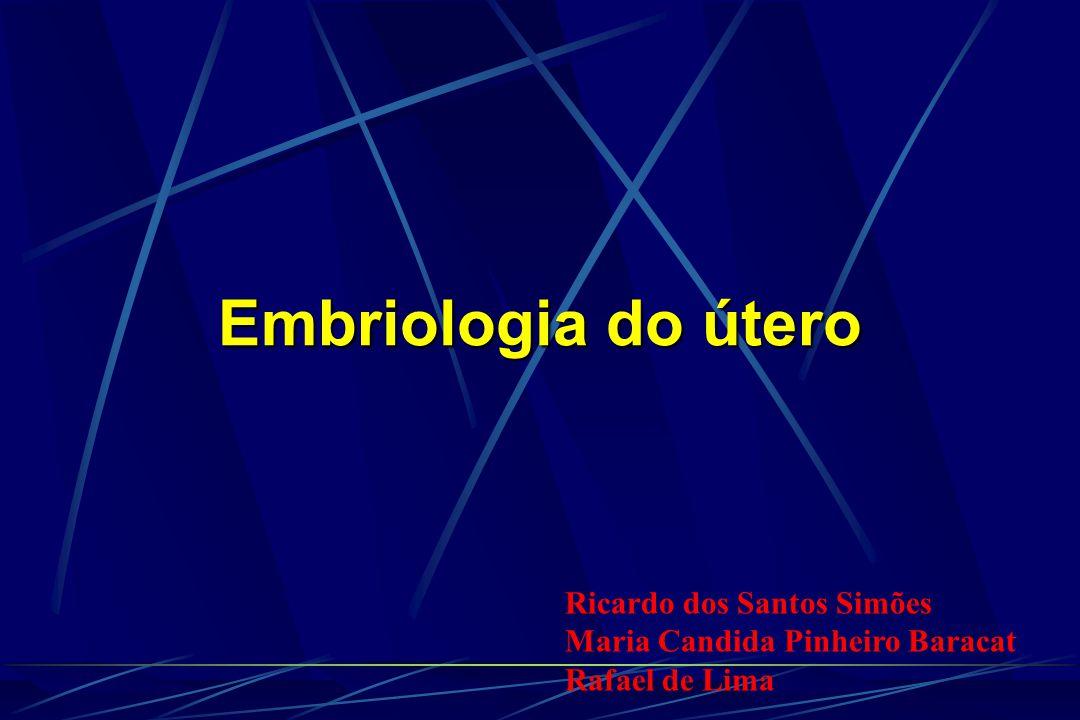 Embriologia do útero Ricardo dos Santos Simões Maria Candida Pinheiro Baracat Rafael de Lima