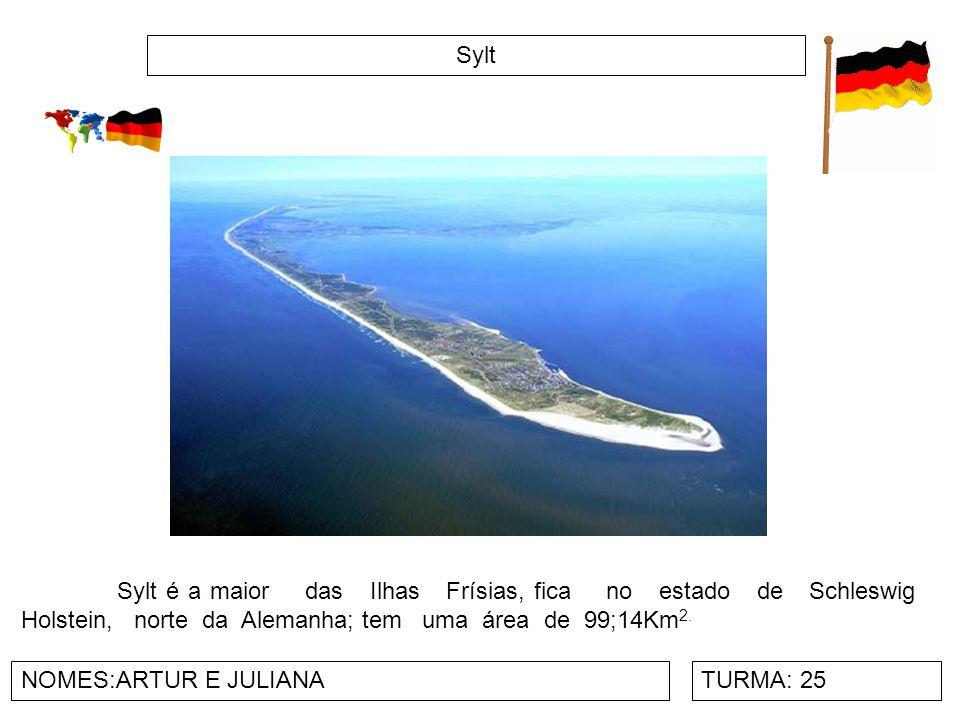Sylt Sylt é a maior das Ilhas Frísias, fica no estado de Schleswig Holstein, norte da Alemanha; tem uma área de 99;14Km2.