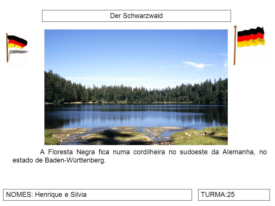 Der Schwarzwald A Floresta Negra fica numa cordilheira no sudoeste da Alemanha, no estado de Baden-Württenberg.