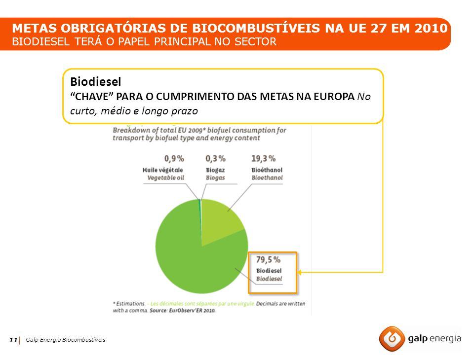 METAS OBRIGATÓRIAS DE BIOCOMBUSTÍVEIS NA UE 27 EM 2010 BIODIESEL TERÁ O PAPEL PRINCIPAL NO SECTOR