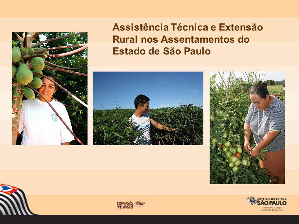 Assistência Técnica e Extensão Rural nos Assentamentos do Estado de São Paulo