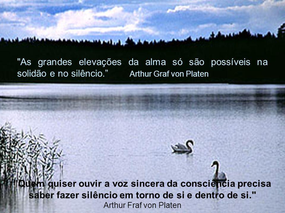 As grandes elevações da alma só são possíveis na solidão e no silêncio. Arthur Graf von Platen