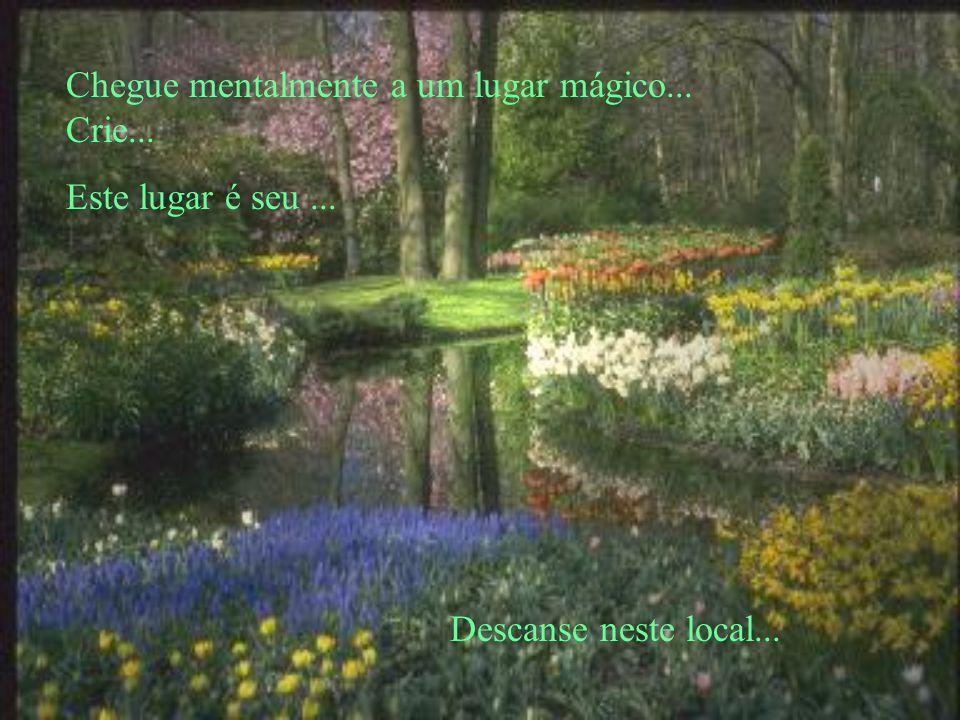 Chegue mentalmente a um lugar mágico... Crie...