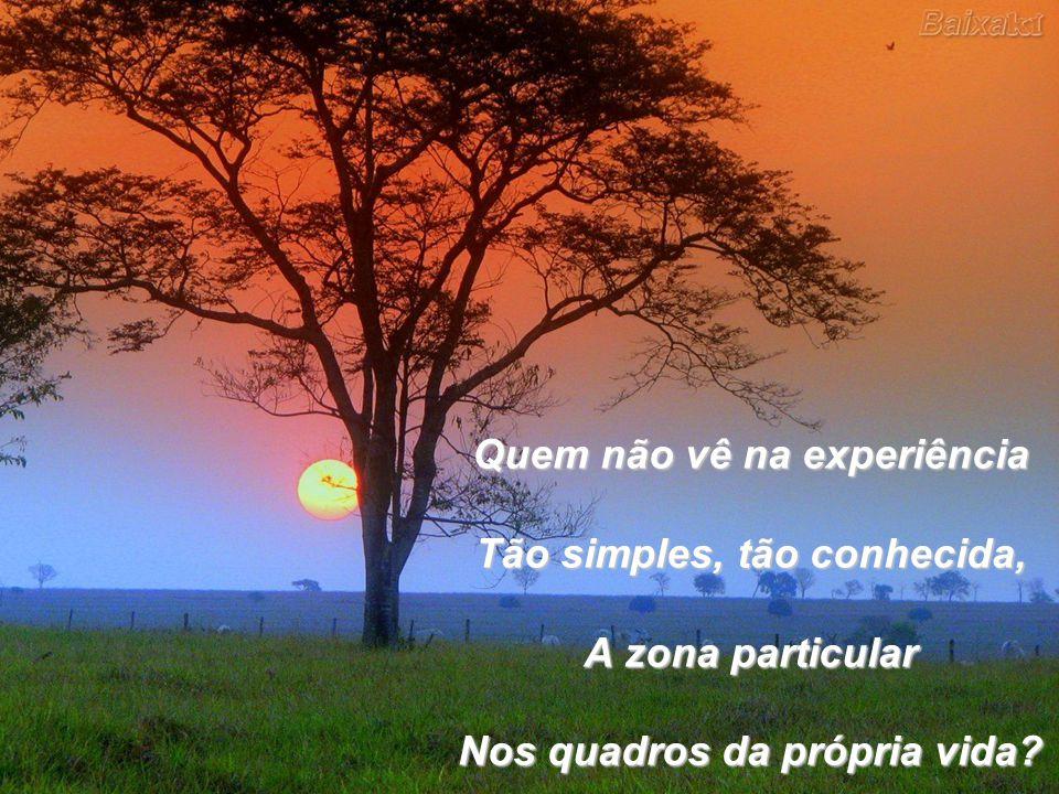 Quem não vê na experiência Tão simples, tão conhecida, A zona particular Nos quadros da própria vida