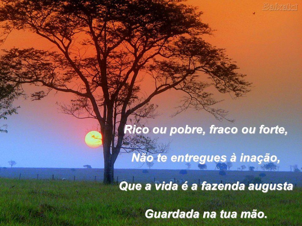 Rico ou pobre, fraco ou forte, Não te entregues à inação, Que a vida é a fazenda augusta Guardada na tua mão.