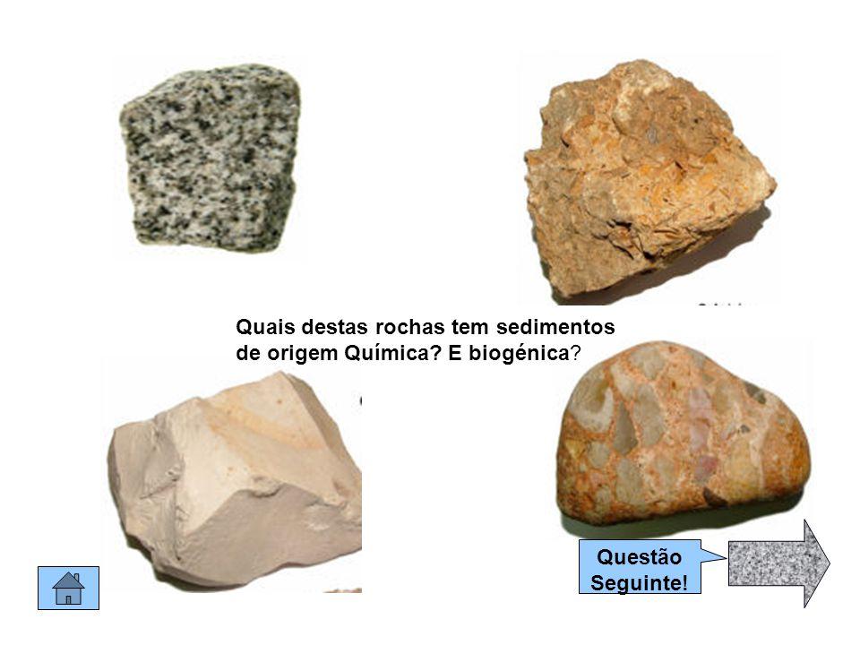 Quais destas rochas tem sedimentos de origem Química E biogénica