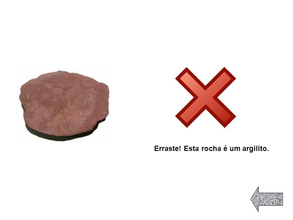 Erraste! Esta rocha é um argilito.