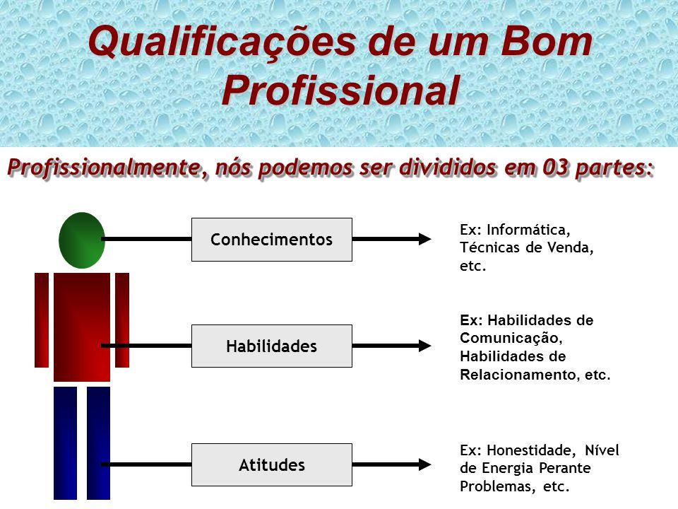Qualificações de um Bom Profissional