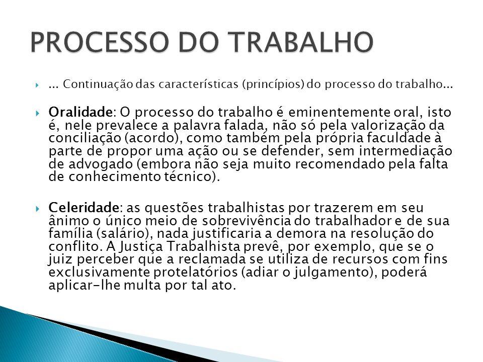 PROCESSO DO TRABALHO ... Continuação das características (princípios) do processo do trabalho...