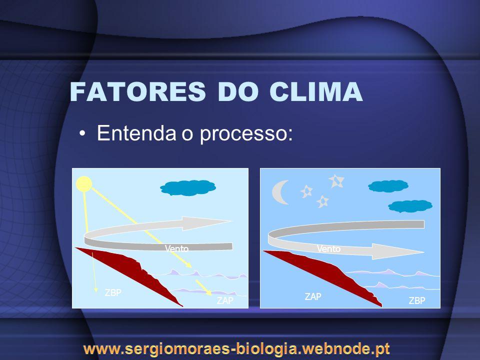FATORES DO CLIMA Entenda o processo: