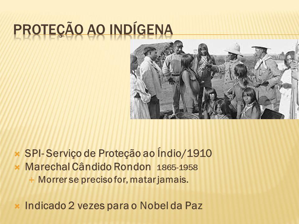Proteção ao indígena SPI- Serviço de Proteção ao Índio/1910
