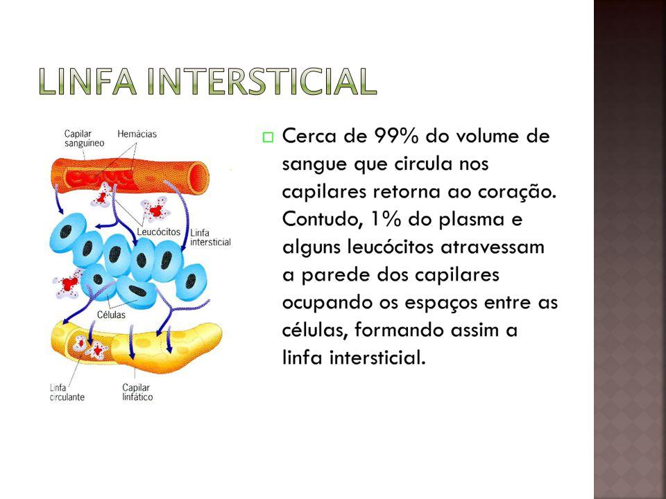 Linfa intersticial