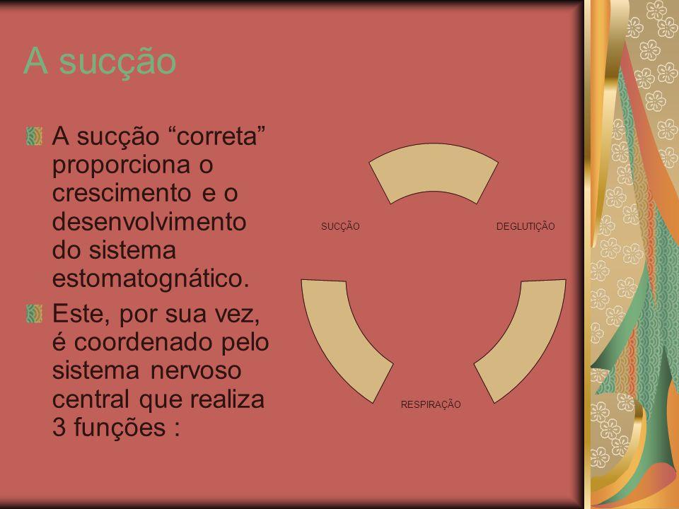 A sucção A sucção correta proporciona o crescimento e o desenvolvimento do sistema estomatognático.