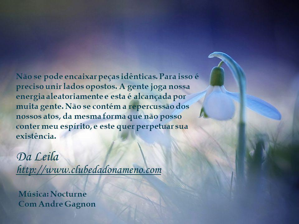 Da Leila http://www.clubedadonameno.com