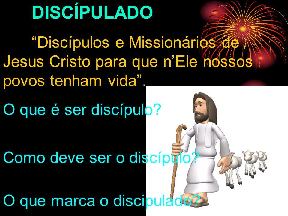 DISCÍPULADO Discípulos e Missionários de Jesus Cristo para que n'Ele nossos povos tenham vida . O que é ser discípulo