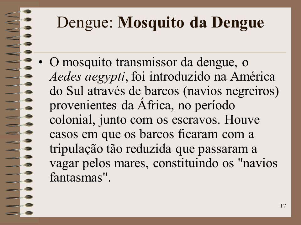 Dengue: Mosquito da Dengue
