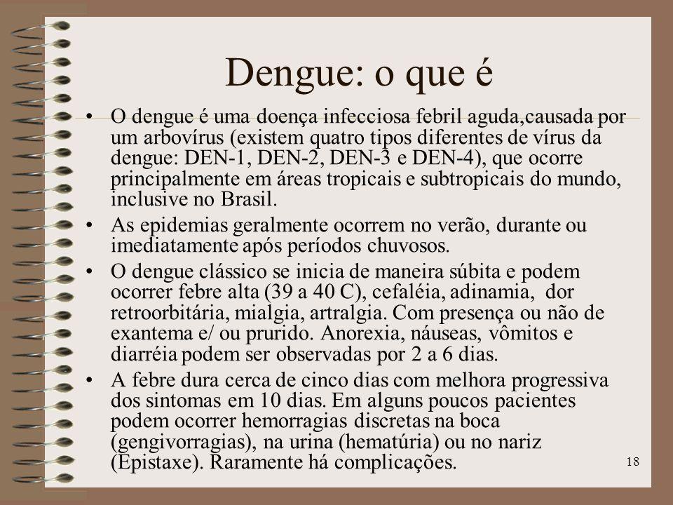 Dengue: o que é
