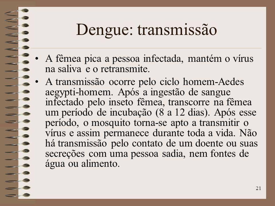 Dengue: transmissão A fêmea pica a pessoa infectada, mantém o vírus na saliva e o retransmite.