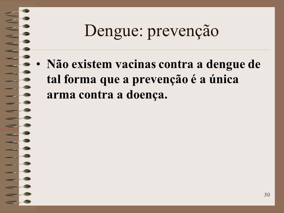 Dengue: prevenção Não existem vacinas contra a dengue de tal forma que a prevenção é a única arma contra a doença.