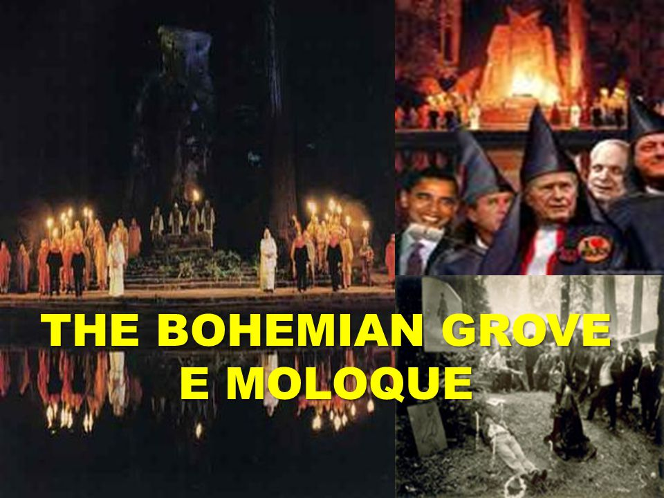 THE BOHEMIAN GROVE E MOLOQUE