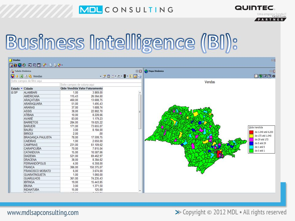Business Intelligence (BI):