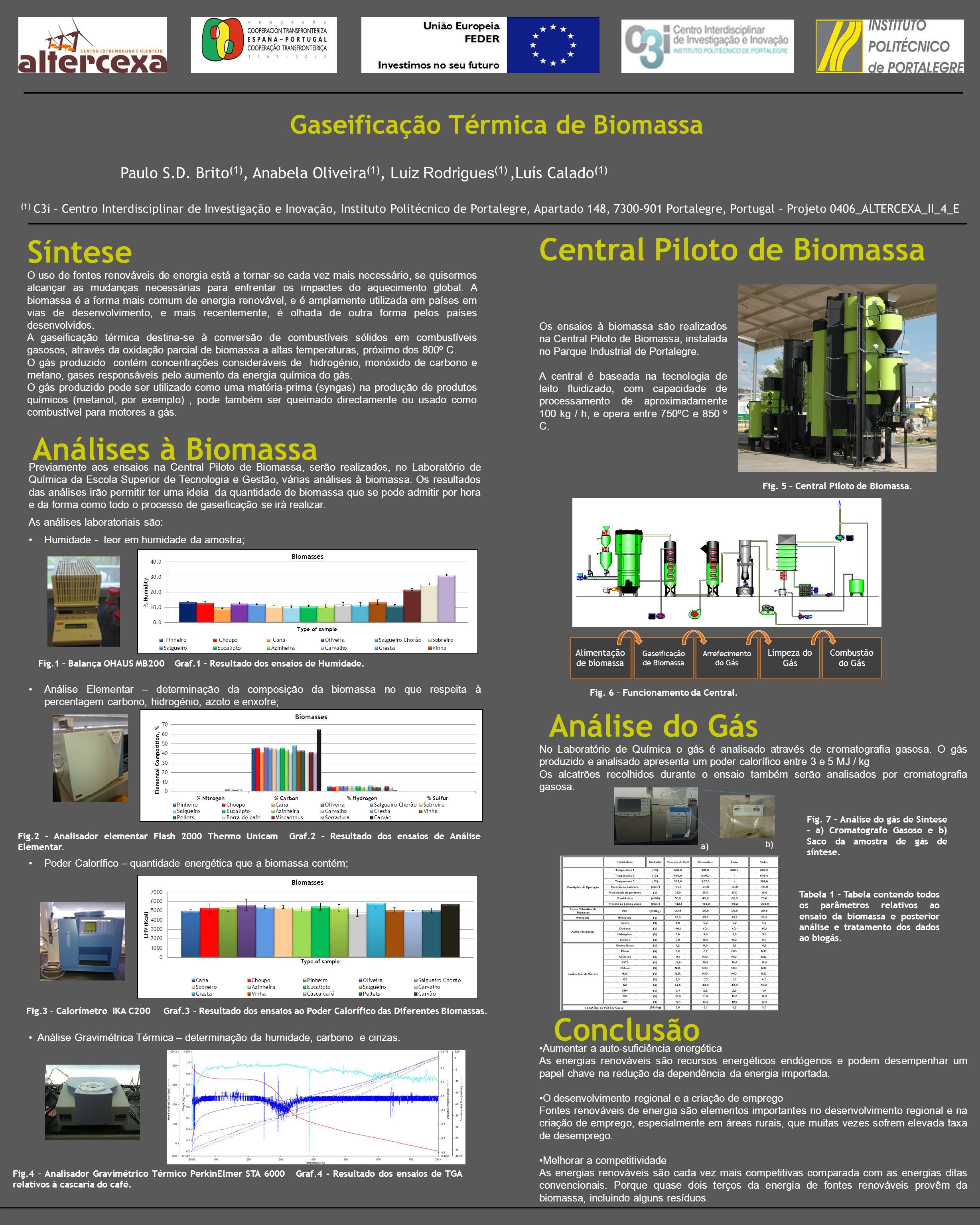 Gaseificação Térmica de Biomassa