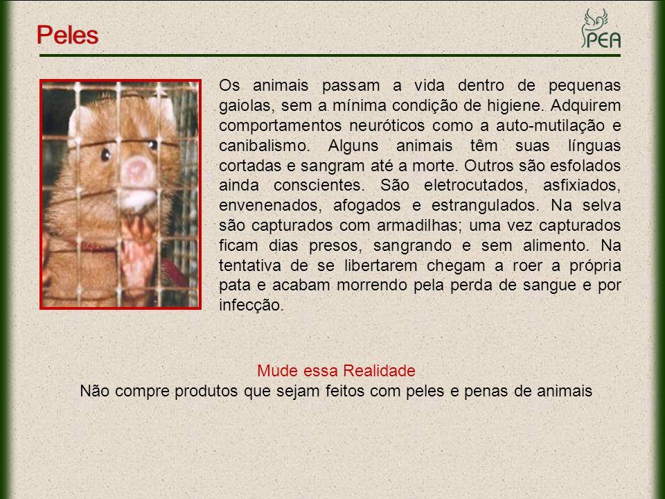 Não compre produtos que sejam feitos com peles e penas de animais