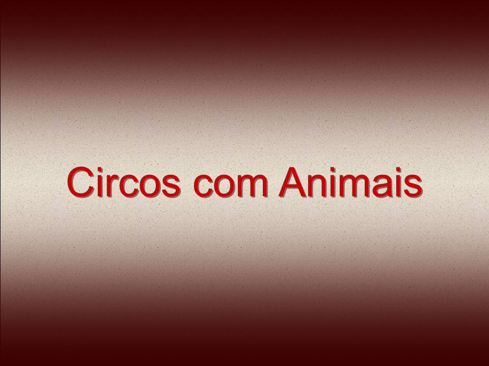 Circos com Animais