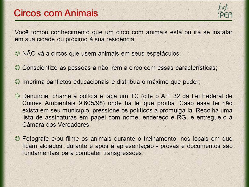 Circos com Animais Você tomou conhecimento que um circo com animais está ou irá se instalar em sua cidade ou próximo à sua residência: