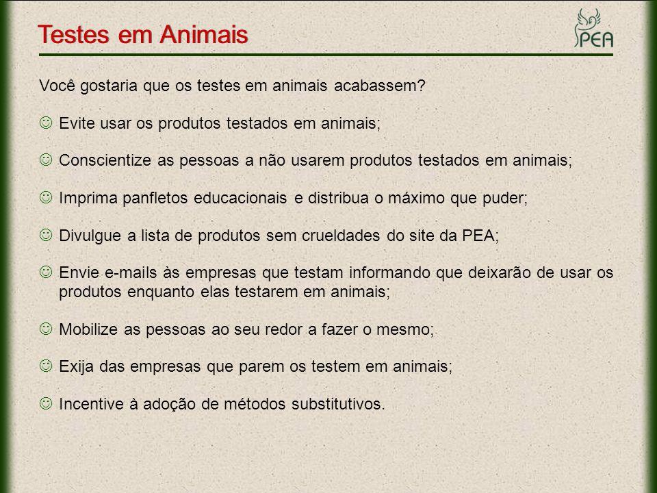 Testes em Animais Você gostaria que os testes em animais acabassem