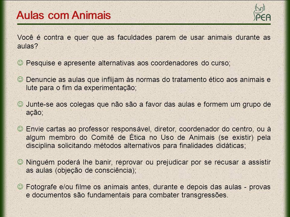 Aulas com Animais Você é contra e quer que as faculdades parem de usar animais durante as aulas