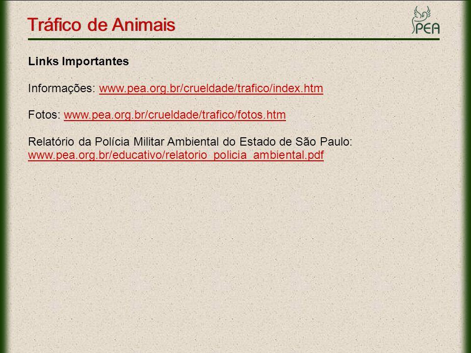 Tráfico de Animais Links Importantes