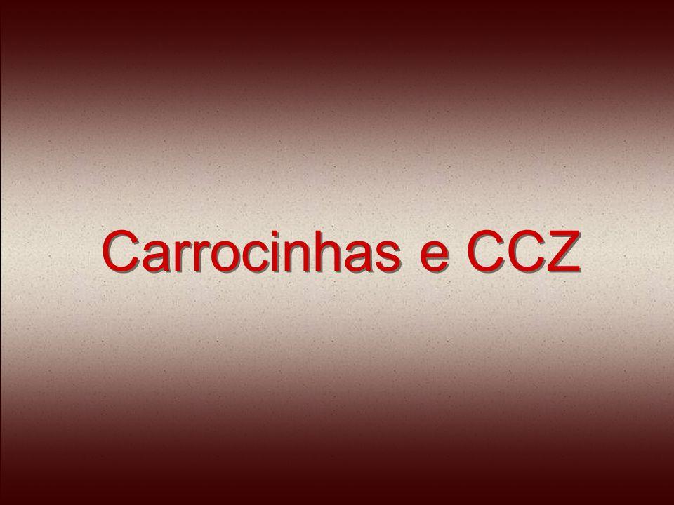 Carrocinhas e CCZ