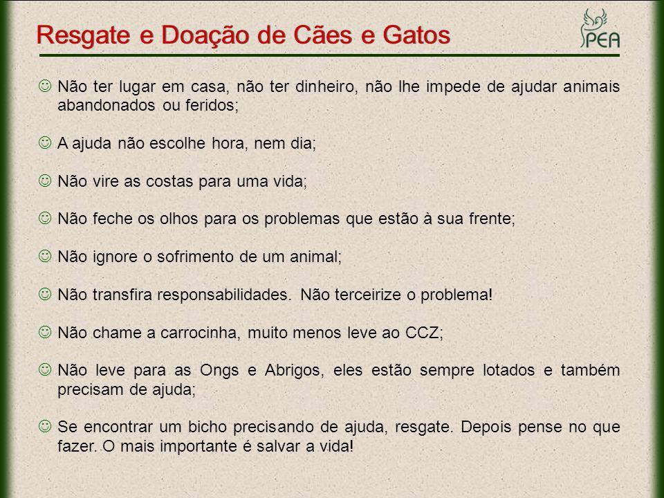 Resgate e Doação de Cães e Gatos