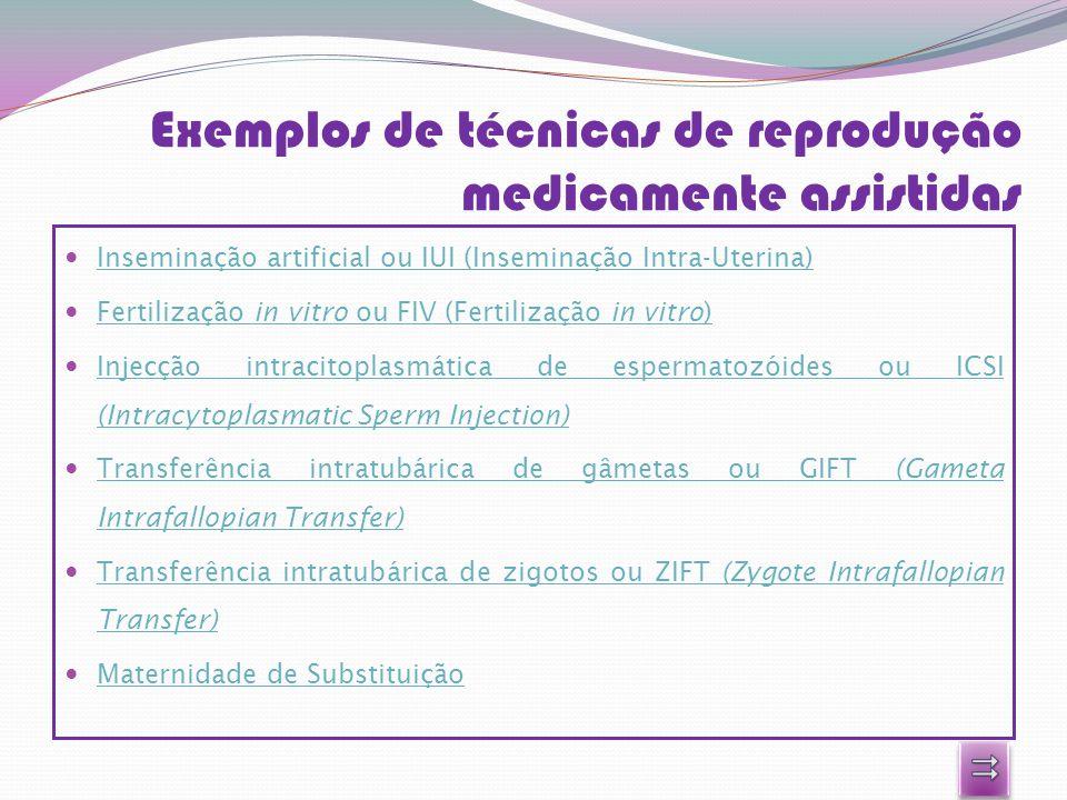 Exemplos de técnicas de reprodução medicamente assistidas