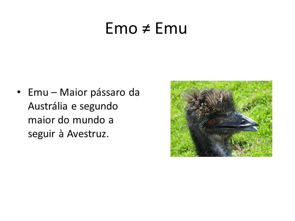 Emo ≠ Emu Emu – Maior pássaro da Austrália e segundo maior do mundo a seguir à Avestruz.