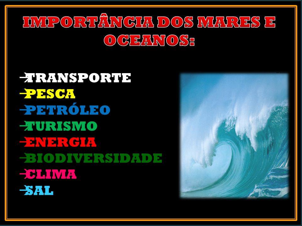 IMPORTÂNCIA DOS MARES E OCEANOS: